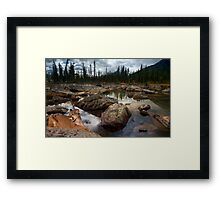 973-Cougar Waters Framed Print