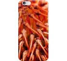 {{Natural & Native}} iPhone Case/Skin