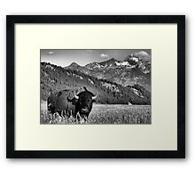 Welcome to Wyoming Framed Print