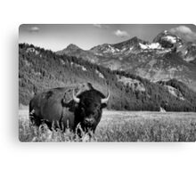 Welcome to Wyoming Canvas Print