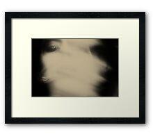 3429 Framed Print