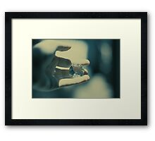 2887 Framed Print