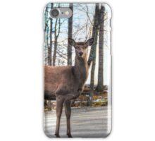High heals on the Highway - Oh Deer iPhone Case/Skin