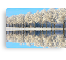 NATURES WINTER MIRROR Canvas Print