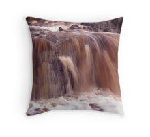 Raining Earth. Throw Pillow