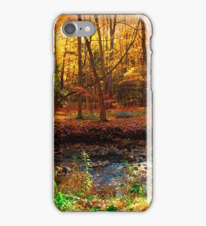 Winter beckons iPhone Case/Skin