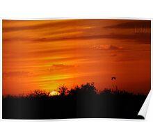 Beautiful Everglades Sunset Poster
