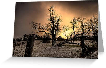 Gold - Hill End NSW Australia  - The HDR Experience Series by Philip Johnson
