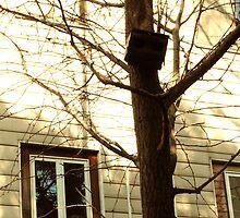 tree by minako375