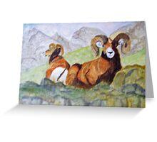 Bighorn Sheep Greeting Card