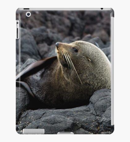 New Zealand Fur Seal iPad Case/Skin