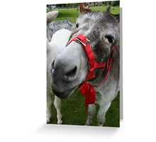 What's with the long face? Greeting Card
