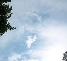 Cloud Angel  by Mark  Carey