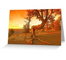 Grand Canyon Sunny Greeting Card