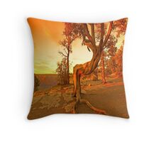 Grand Canyon Sunny Throw Pillow