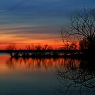 Pymatuning Morning by Geno Rugh