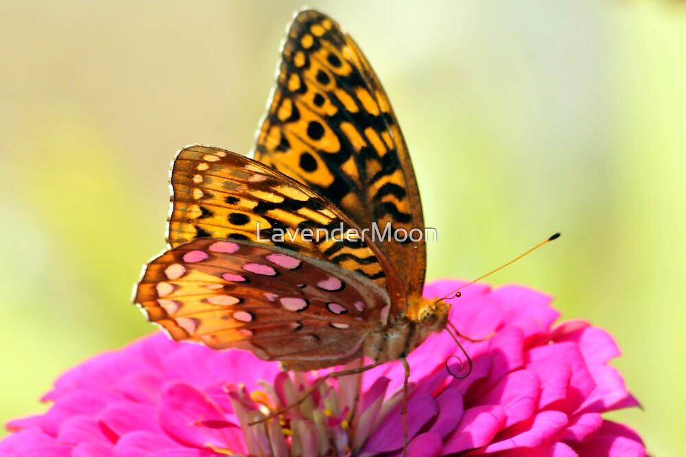 Elusive Tigress 2 by LavenderMoon