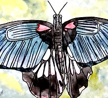 Butterfly macro watercolor painting by derekmccrea