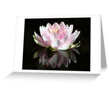 Petal Reflections Greeting Card