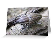 Weevil-O's (Clay-Colored Billbug) Greeting Card