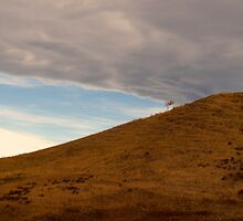 Chinook Arch by ldredge
