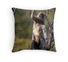 Langur Monkey II Throw Pillow