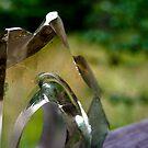 Through The Glass by eliaso