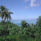 Tahiti Scenery #4 by Kristin Hamm
