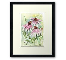 Daisies for healing Framed Print
