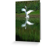 """Heron, White Phase """"The Victor"""" Greeting Card"""