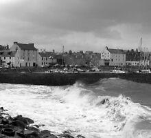 Stonehaven Harbour - Scotland by John Thurgood