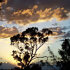 Sunset in Ballarat by straylight
