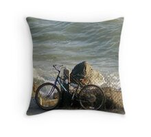 Dry Ride? Throw Pillow