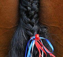 Beribboned Tail by rosie320d