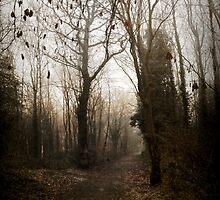 A Grim Journey by OzzieBennett