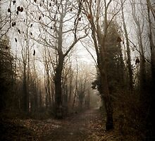A Grimm Path to Take by OzzieBennett