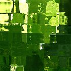 Chlorophyll by Fred Shively
