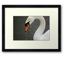 Excuse me dripping Framed Print