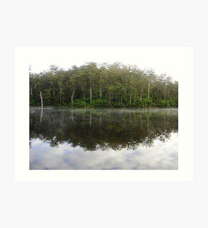 Lake at Pemberton WA Art Print