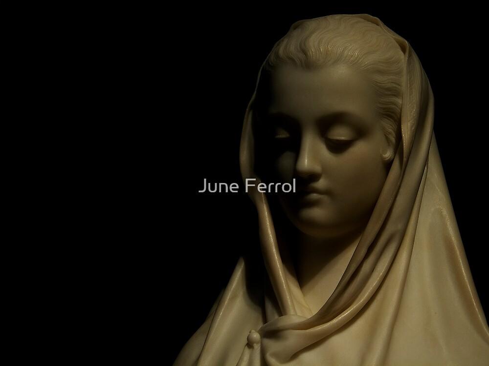REFLECTING by June Ferrol