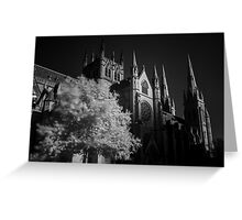 St Mary's Cathedral Sydney Greeting Card