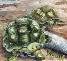 Turtle Friends by Brenda Thour