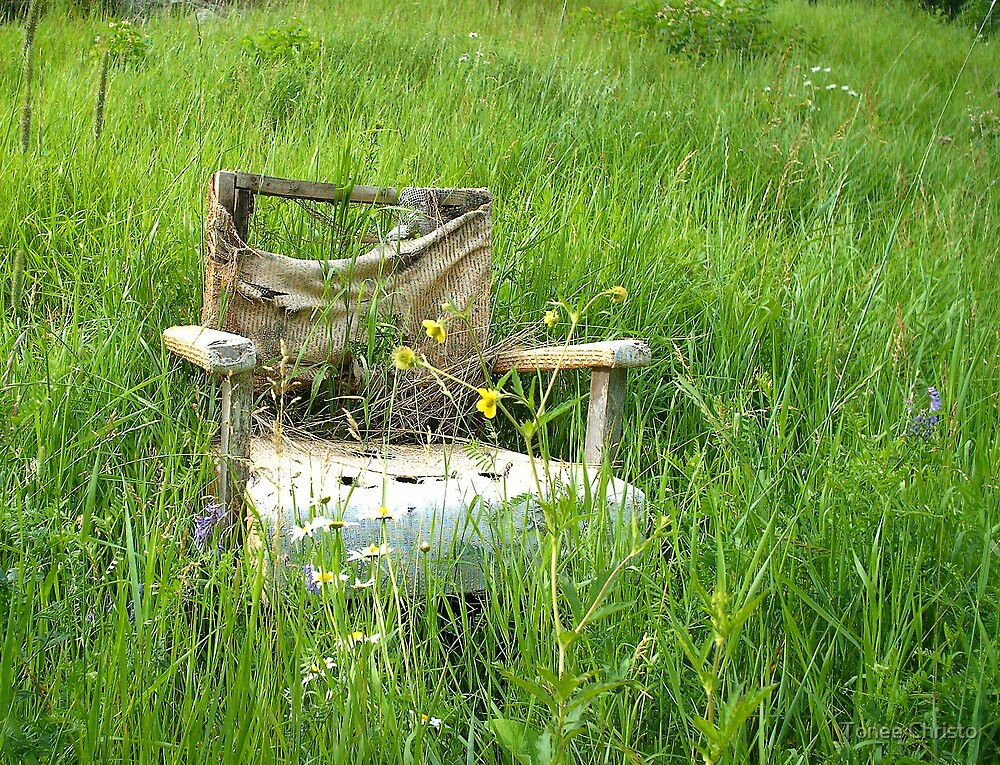Abandoned Chair by Tonee Christo