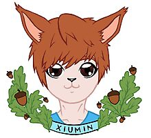 Squirrel Xiumin EXO Photographic Print