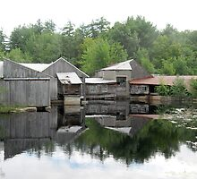 The Old Saw Mill by Judi FitzPatrick