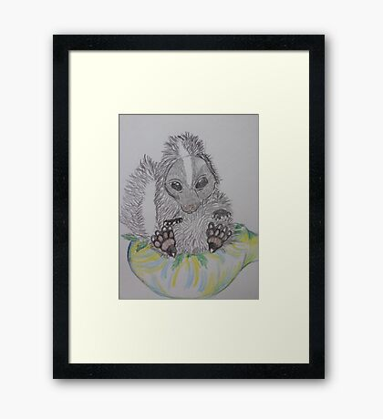 skunk weed bowl Framed Print