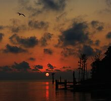 The End Or Beginning Of A Perfect Day by Nikki Moore