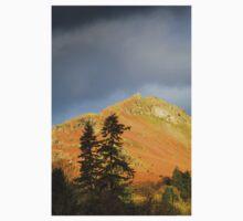 Tree Top Views, Grasmere, Lake District Kids Clothes