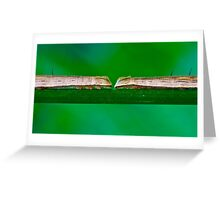 Two Big Caterpillars in a Green Nature Environment Greeting Card