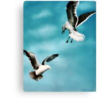 Two Seagulls Original oil painting  Canvas Print
